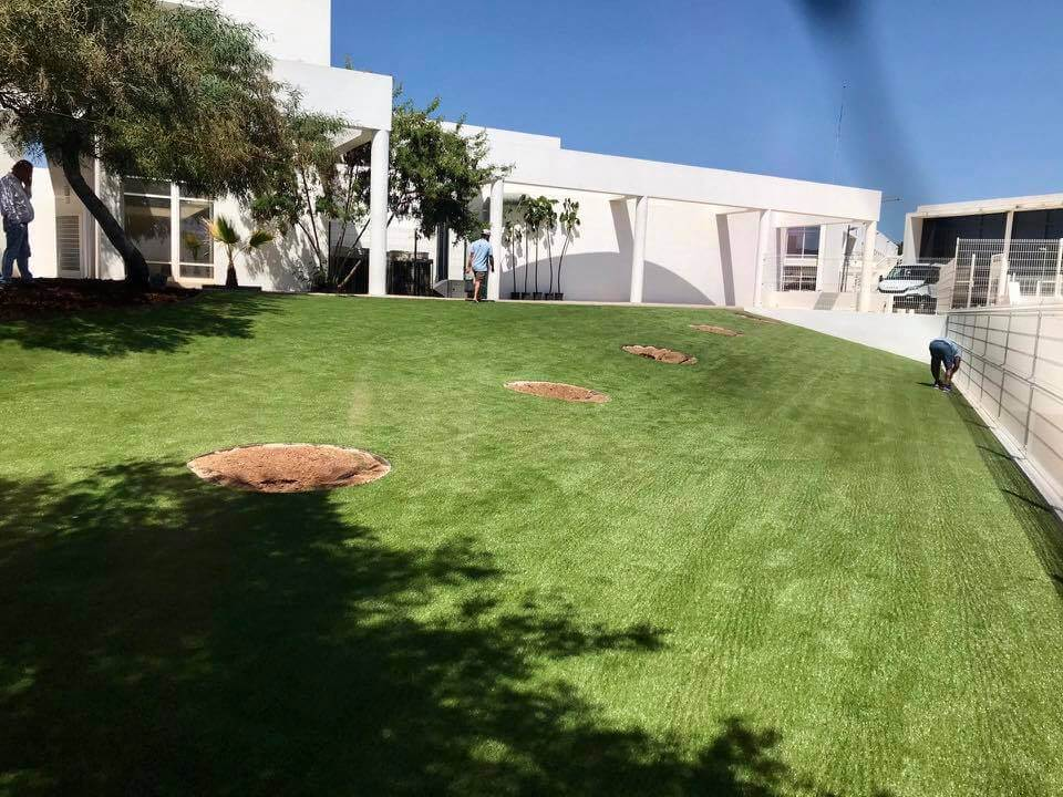 grasshopper-greens-lawns-2020 (25)